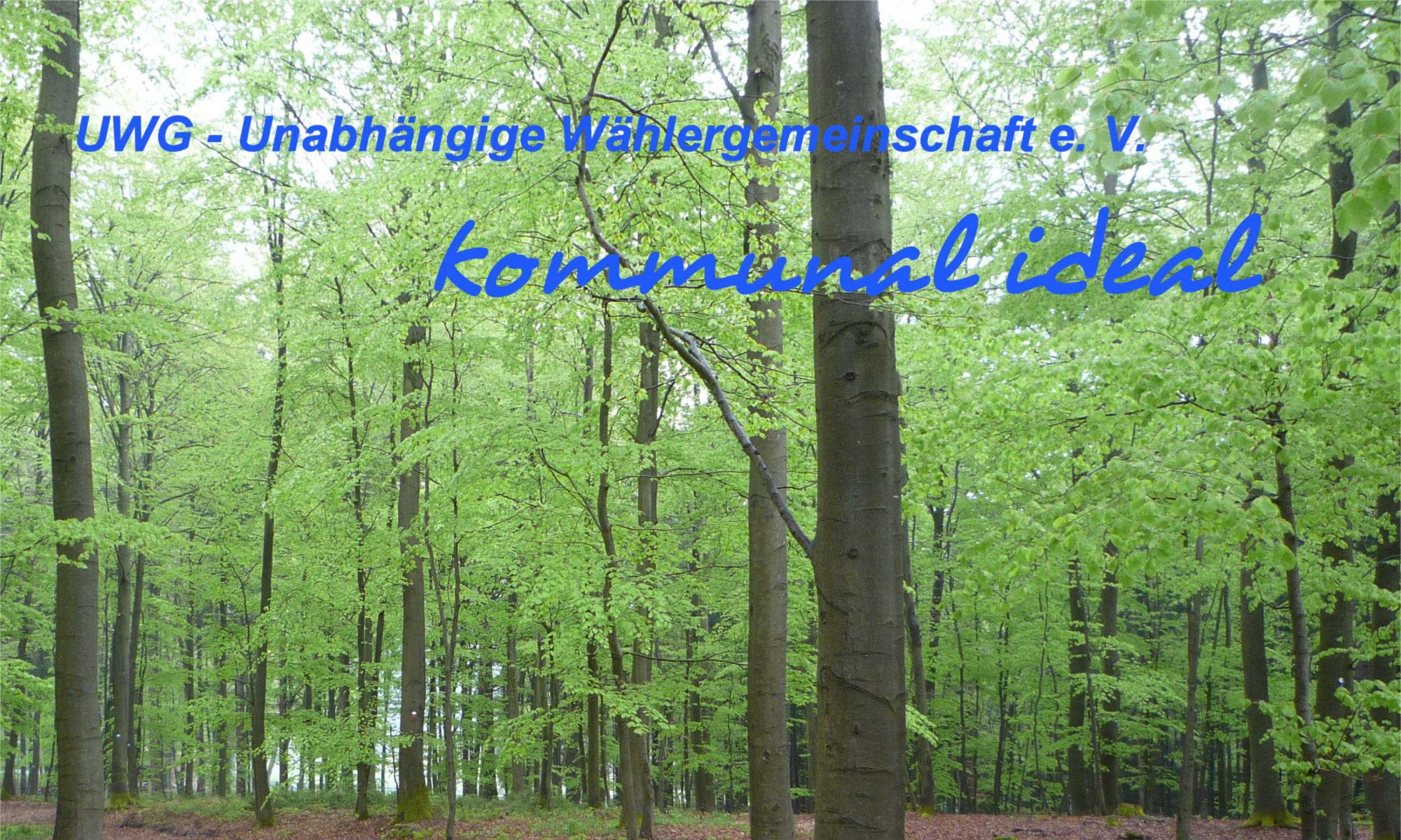 Unabhängige Wählergemeinschaft Schmallenberg e. V.